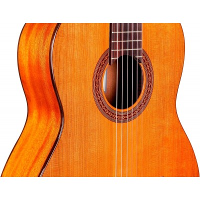 Cordoba Dolce 7/8 Size Nylon String Classical Acoustic Guitar