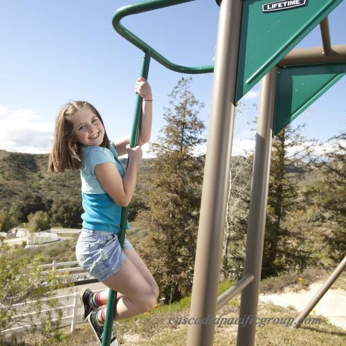 Lifetime Monkey Bar Adventure Metal Swing Set 552231435